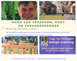 Afbeelding › Hugo Van Verdegem